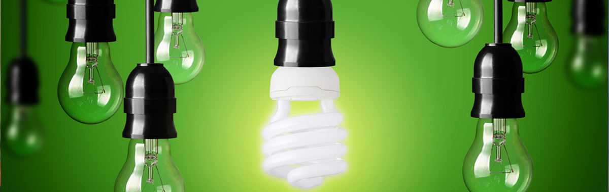 Energy Efficient light bulbs on a green background